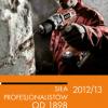 Katalog elektronarzędzi AEG 2012/2013