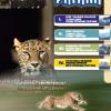 Katalog narzędzi skrawajacych Pafana 10/2012