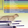 Katalog narzędzi skrawających Pafana 04.2016